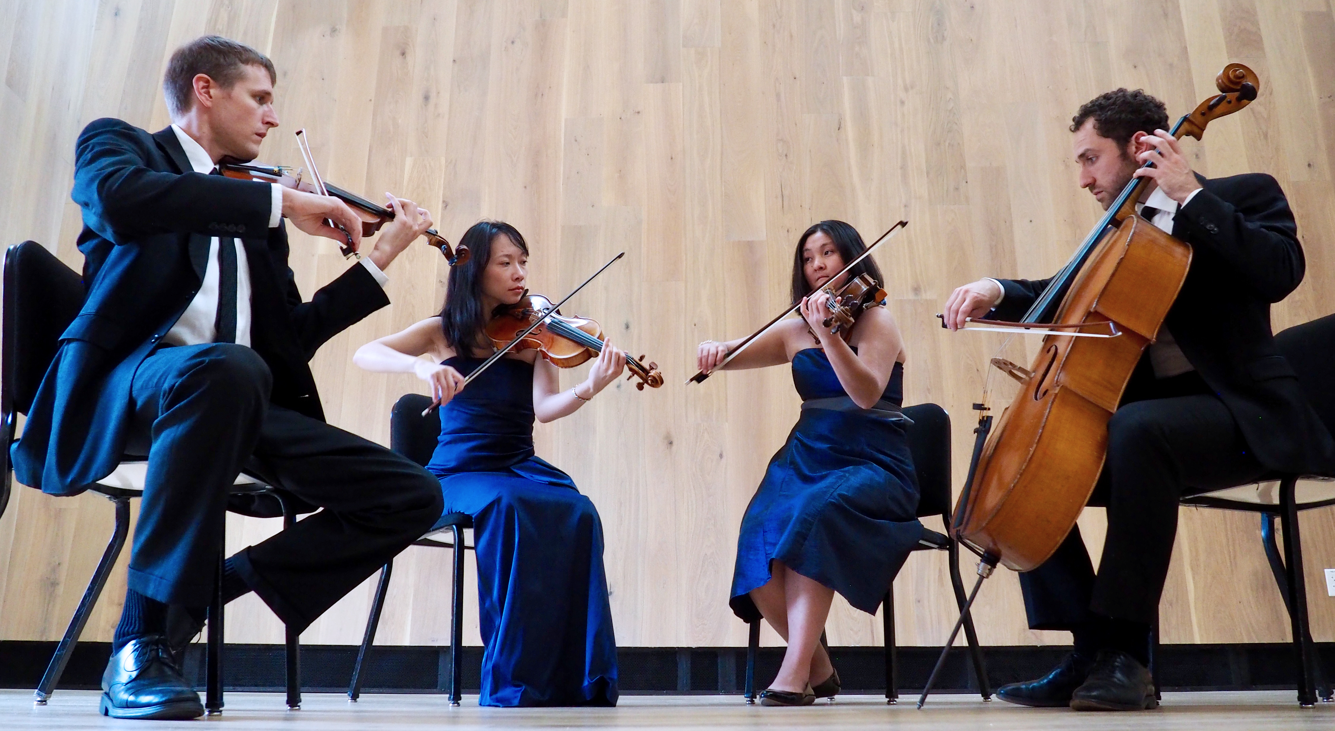 Delgani String Quartet